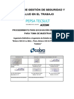 4.0.PETS_Calicatas_Manual_Piura-Tumbes-Rev.01