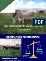 suplementacion en  vacas