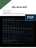 EN-US-CNTNT-white-paper-DBMod-Microsoft-SQL-Server-2019-Technical-white-paper.en.es