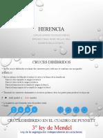 HERENCIA+II.pptx