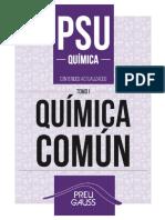 Texto química PSU
