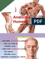 ANATOMIA HUMANA CUARTA CLASE - copia (2).pdf