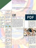 YAULEMA CEPEDA-MÓNICA  FERNANDA- TAREA2-2 REALICE UN MAPA CONCEPTUAL SOBRE LOS ARTÍCULOS 66,67 Y 68 DE LA CONSTITUCIÓN.pdf