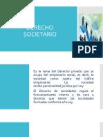 Derecho societario -Tipos de Sociedades