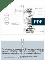 analisis transaccional 2
