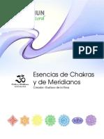 9.CHAKRAS GUSTAVO DE LA ROSA
