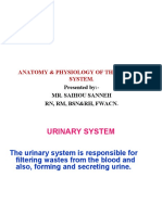 LECT. 15 URINARY SYSTEM