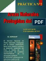 practica_2-ANP_DEL_PERU.pptx