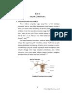 jtptunimus-gdl-devyisella-6421-3-ktibab-i