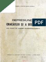 Depresiunea Cracaului Si a Bistritei