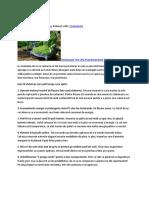 10 Sfaturi Pentru A Fi Eco.docx