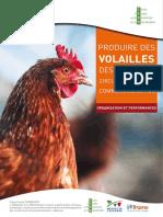 Produire-des-volailles-destinées-aux-circuits-courts-de-commercialisation
