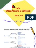 Cnidaria Corais 2014
