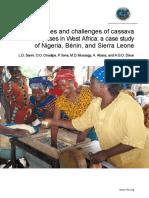 Swot analysis of cassava