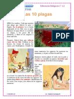 10 plagas_ op.docx