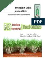 BMLima-200901-Seminario.pdf