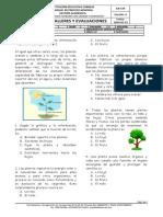 EVALUACIÓN LAS PLANTAS.doc