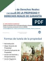 Diplomado de tutelas de propiedad y derechos reales de garantia 2019.pptx