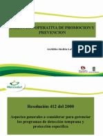 COMPONENTE PYP  RESOLUCION 412