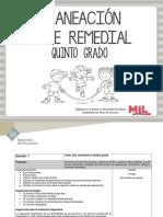 PLANEACION REMEDIAL 5.pdf
