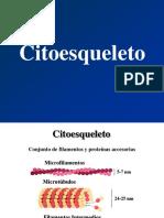 595384673.6-citoesqueleto.pdf