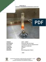 PRACTICA DE LABORATORIO NRO 5 Reconocimiento de bioelementos o biogenesicos. (Finalizado).docx