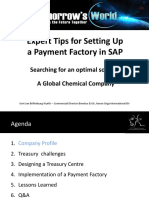 silo.tips_expert-tips-for-setting-up-a-payment-factory-in-sap