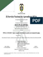 Raúl Plaza Rivera.pdf