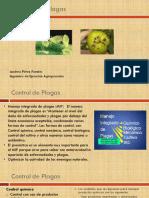 5 Control de Plagas.pdf