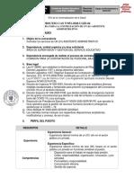 TDR CAS N° 052-2020