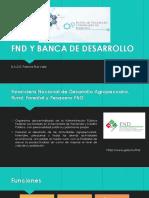 FND Y BANCA DE DESARROLLO