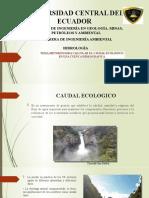 caudal ecologico.pptx