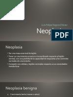 pato 11 Neoplasias 2017