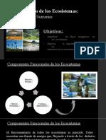 Funciones de los Ecosistemas - Energia y Ciclos de Nutrientes