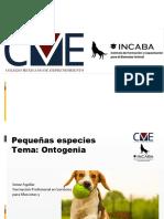 P1 Generalidades de las pequeñas especies Ontogenia de los perros y gatos