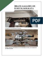 INVERTEBRATE GALLERY OF INDIAN MUSEUM.docx