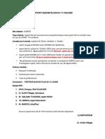 RAPPORT DESCENTE EIIR DU 17 04 2020