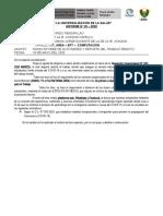 PROPUESTA INFORME SECUNDARIA PLAN REMOTO_MAYO_2020