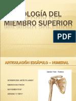 ARTROLOGÍA DEL MIEMBRO SUPERIOR - copia