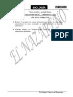 TAREA-DOMICILIARIA-CURSO-BIOLOGIA-TEMA-CADENA-ALIMENTICIA (1).pdf