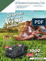 10576 Manuel Gomes Lourenco