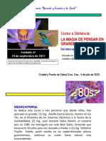 Curso a Distancia LA MAGIA DE PENSAR EN GRANDE (GLS AEG)