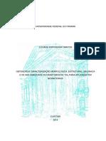 Obtenção e caracterização morfológica, estrutural, mecânica e de molhabilidade de nanotubos de TiO2 para aplicação em biomateriais