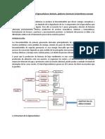 Bioconversión de lignocelulosa en biofuels biorefinerías