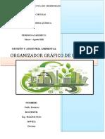 B. ORGANIZADOR GRAFICO DE UN SGA