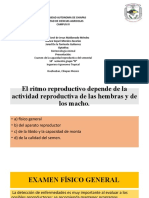 presentación M.C. Maldonado.pptx