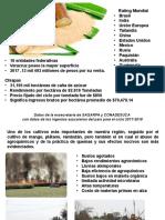 PRESENTACION PROTOCOLO JARED .pptx