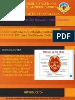 CIRUGIA  MUSCULOS  BUCALES Y MAXILOFACIALES.pptx