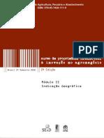 CURSO DE IG MINISTÉRIO DA AGRICULTURA 1.pdf