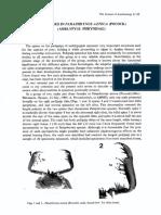 Espinas bifidas en Paraphrynus Azteca